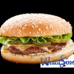 burger-chiken